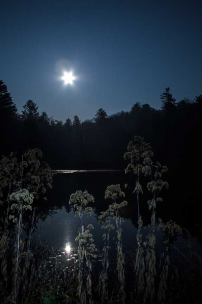 full moon over Linden Lake