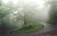 Switchback on Horse Cove Road (summer fog)