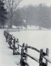 Winter :: Old fence with snow in Horse Cove