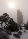 Sun and Fog in Arches National Monument, Utah, vertical